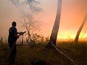 За умышленный поджог леса забайкальцу грозит 10 лет тюрьмы