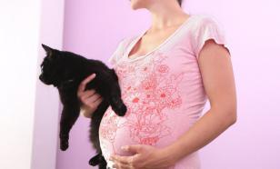Почему беременным нельзя наступать на свеклу