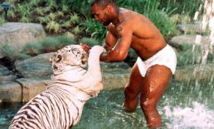 Тренер Майка Тайсона вспомнил, как боксёр закрыл его в клетке с тигром