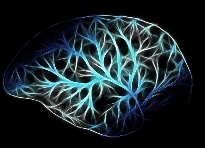 Сомнолог Роман Бузунов: наш мозг никогда не спит