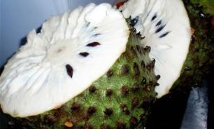 Гуанабана - малоизвестный, но очень полезный фрукт