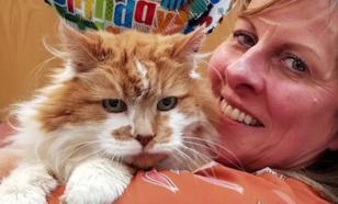 Умер самый старый кот в мире. Ему был 31 год