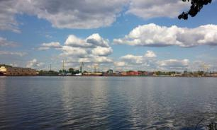 В Истринском районе Московской области введен карантин. Бешенство