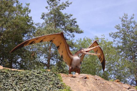 """Найден птерозавр, напоминающий дракона из """"Игры престолов"""""""