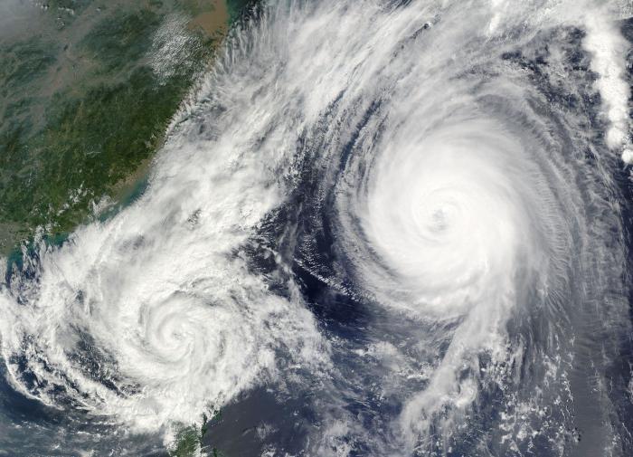 Тропические тайфуны помогают восстанавливать леса