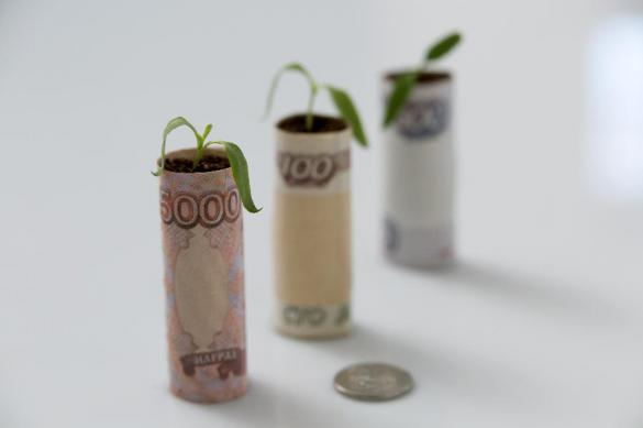 Закон о кредитных каникулах приняли в ГосДуме