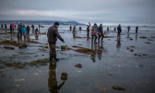 Литва требует у России сократить добычу рыбы в Балтийском море