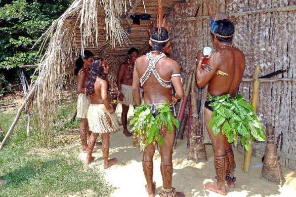 Археологи нашли в Амазонии древнейший очаг земледелия