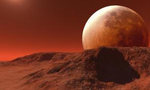 Исследователь насекомых обнаружил их на фото с Марса
