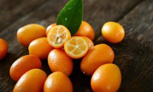"Кумкват - ""декоративный мандарин"" для иммунитета"