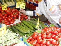 Чешские и греческие овощи пустили на российские прилавки.