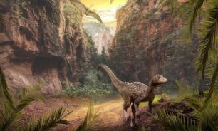 Обнаружен новый вид пернатого динозавра, жившего 120 млн лет назад