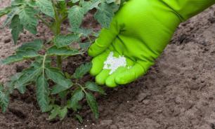 Уральские специалисты разработали программу для расчета норм удобрений