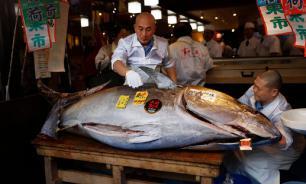 В Японии с аукциона продали тунца за $1,8 млн