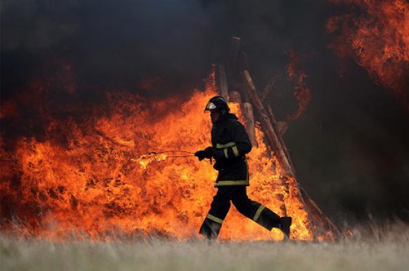 Предотвращено полное выгорание восьми населенных пунктов из-за лесных пожаров
