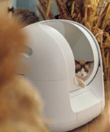 """Разработаны уникальные """"умные"""" лотки для кошек"""
