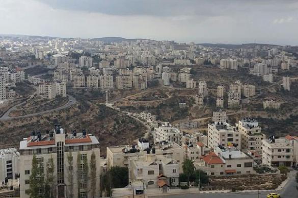 Палестина призывает мир остановить израильских экстремистов