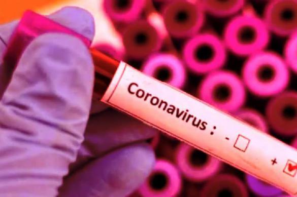 Более миллиона тестов на коронавирус проведено в России