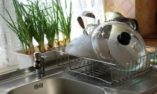 Микробиолог из США назвал раковину самым опасным местом в квартире
