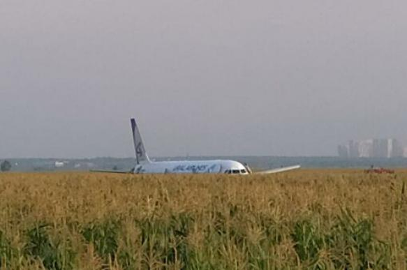 Второй пилот А321 рассказал о жесткой посадке в поле