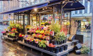 В Петербурге через суд закрыли цветочный магазин, нарушивший карантин