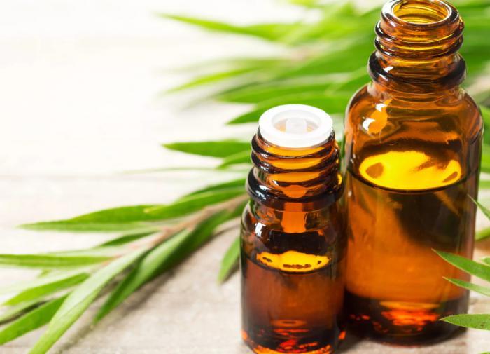 Масло чайного дерева: негатив от гинекологов