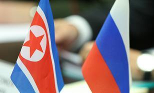 В КНДР поддержали поправки к Конституции России