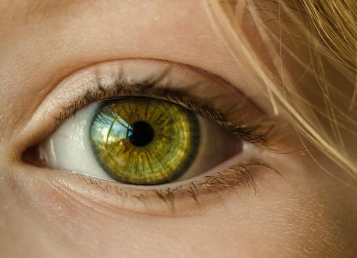 Обследование у офтальмолога поможет выявить болезнь Паркинсона