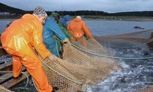 В Росрыболовстве решили проблему с Китаем и поставками рыбы