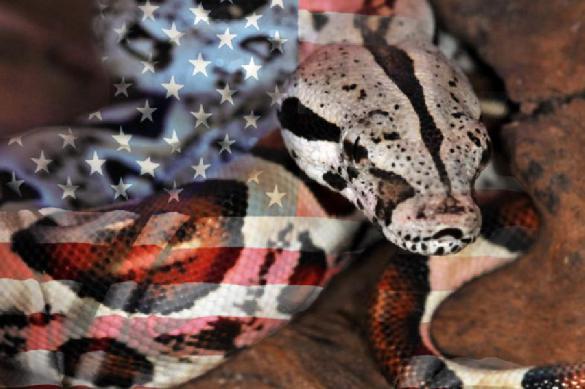 США выступили против действующего президента Венесуэлы