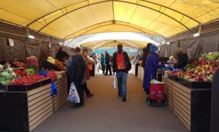 В Курске открылась выставка сосок, которые «линяют»