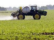 Агрохолдинги гробят наше сельское хозяйство