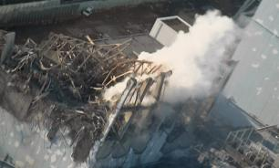Ученые поражены: Около радиоактивной фукусимы выросли ромашки