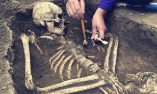 В Кении нашли кости Homo еrectus возрастом почти два миллиона лет