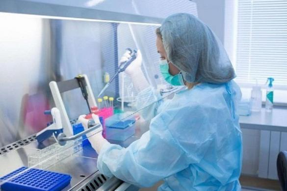 Ученые сумели предсказать направление роста раковой опухоли