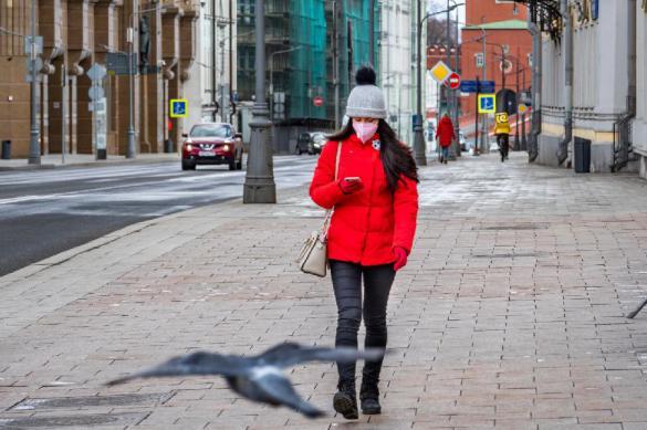 1459 новых случаев коронавируса зарегистрировано за сутки в России