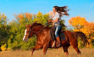Кататься на лошади – это здорово!