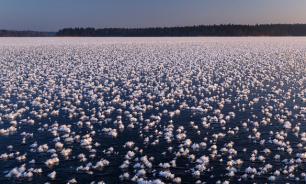 На льду Валдая распустились цветы