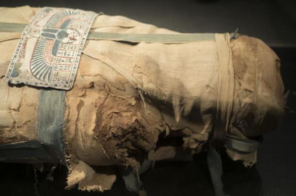 В Египте на съемках фильма случайно нашли древнюю мумию