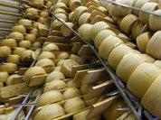 Пользуясь ситуацией, Белоруссия поднимает цены для России на сыр