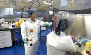 В США назвали вероятную причину возникновения пандемии COVID-19