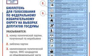 Стало известно, как будет выглядеть избирательный бюллетень на выборах в Госдуму