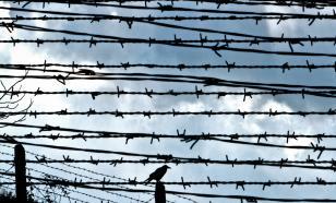 Латвия поставит забор из колючей проволоки на границе с Белоруссией
