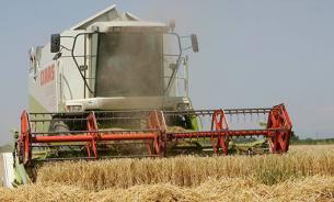 Минсельхоз России: Для продовольственной безопасности страны пора снижать импорт