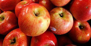 Россия может запретить импорт фруктов из Сербии из-за польских яблок