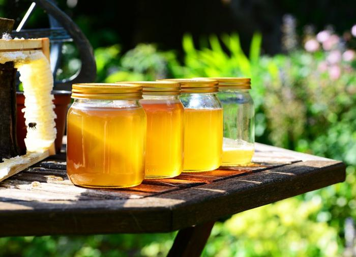 Врач Николай Дубинин напомнил о пользе мёда при осенних ОРВИ