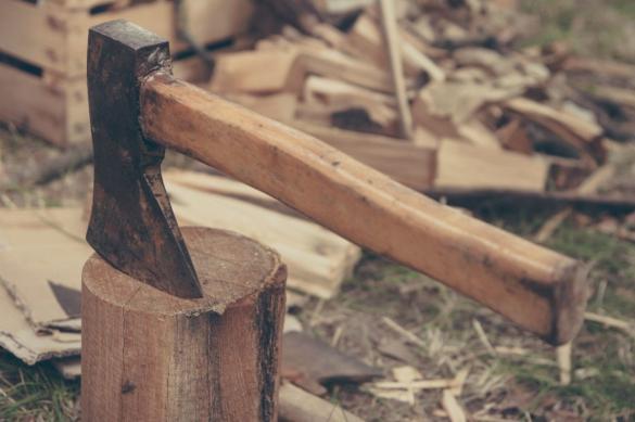 На Кубани мужчину будут судить за заготовку дров