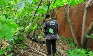 В Саратове сторожевые собаки нашли голову человека