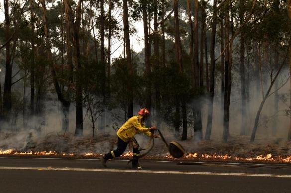 Как спортсмены помогают борьбе с пожарами в Австралии