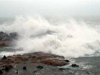 Тайфун-убийца из Японии растерял силу в Приморье.